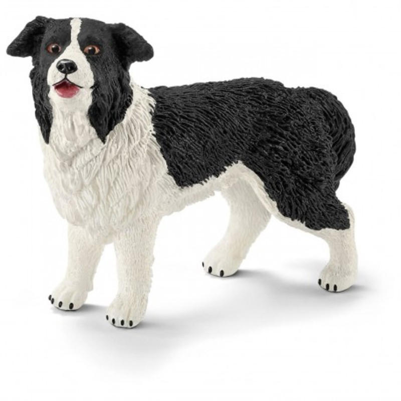 Schleich - Rasa Border Collie - Pies 16840 - 19,99 PLN